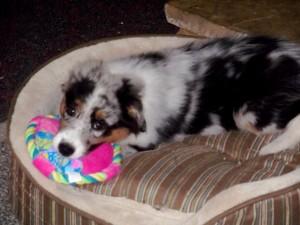 Kiera with pink toy2